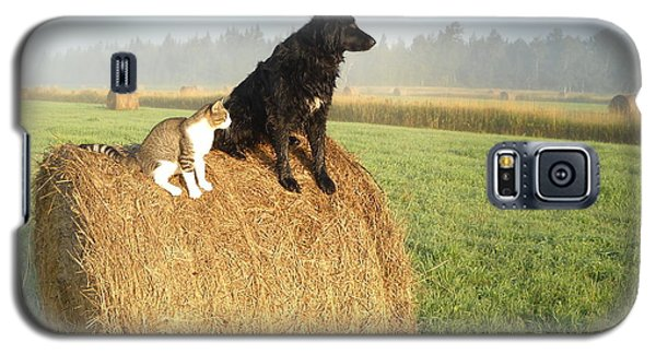 Cat And Dog On Hay Bale Galaxy S5 Case