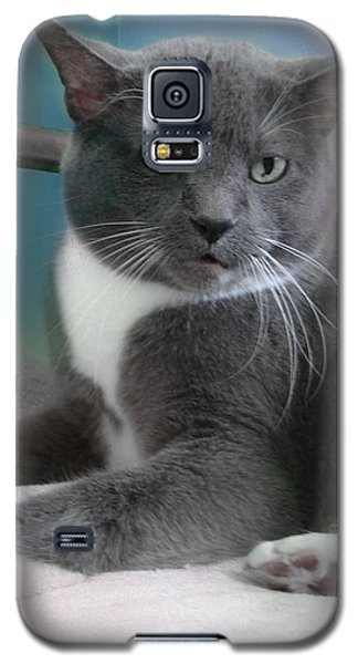 Cat Boticas Portrait  Galaxy S5 Case