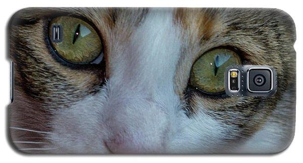 Cat Eyes Galaxy S5 Case