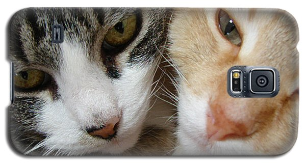 Cat Faces Galaxy S5 Case