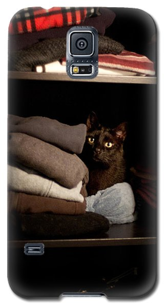 Galaxy S5 Case featuring the photograph Cat In The Closet by Laura Melis