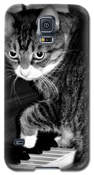 Cat Jammer Galaxy S5 Case
