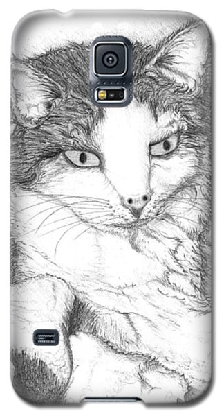 Domestic Cat Galaxy S5 Case