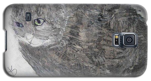 Cat Named Shrimp Galaxy S5 Case