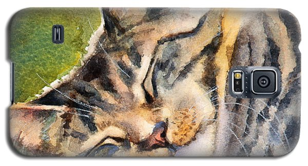 Galaxy S5 Case featuring the painting Cat Nap by Bonnie Rinier