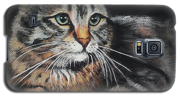 Cat Pastel Drawing Galaxy S5 Case