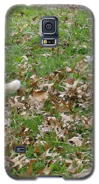 Galaxy S5 Case featuring the photograph Cat Playing In The Leaves by Skyler Tipton