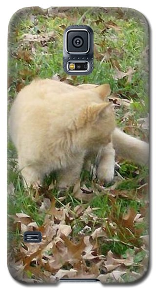 Cat Playing In The Leaves Galaxy S5 Case by Skyler Tipton