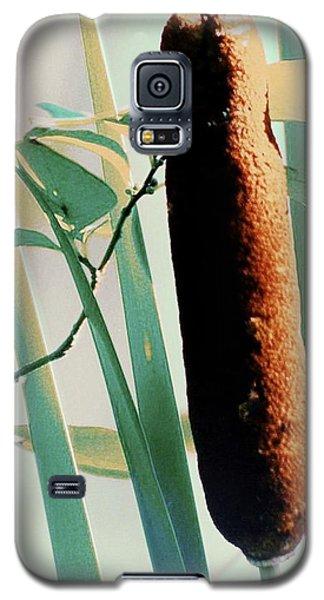 Cat Tales Galaxy S5 Case