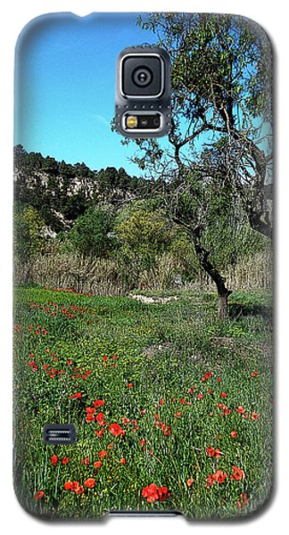 Catalan Countryside In Spring Galaxy S5 Case