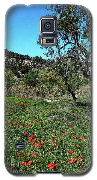 Catalan Countryside In Spring Galaxy S5 Case by Don Pedro De Gracia
