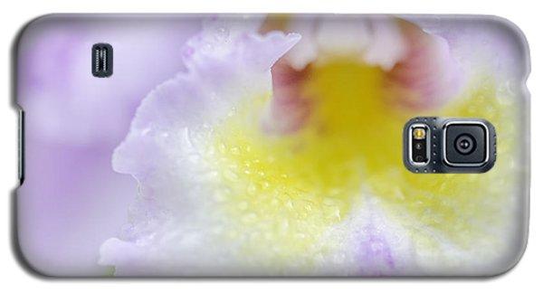 Catalaya Kiss Galaxy S5 Case by Mary Angelini