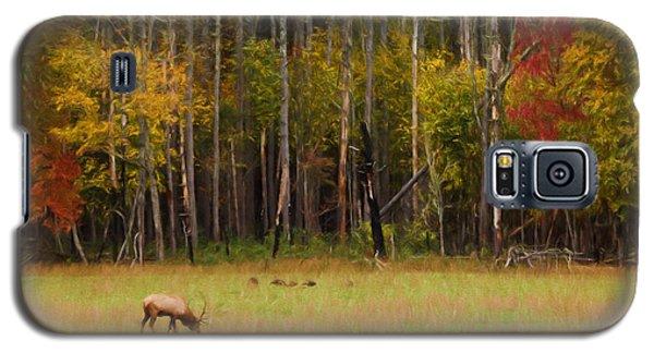 Cataloochee Valley Elk Galaxy S5 Case