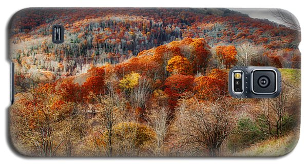 Cataloochee Fall Galaxy S5 Case