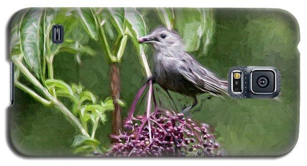 Catbird Galaxy S5 Case