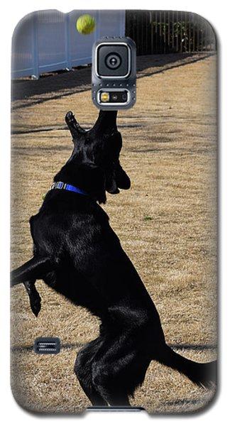 Catch Galaxy S5 Case