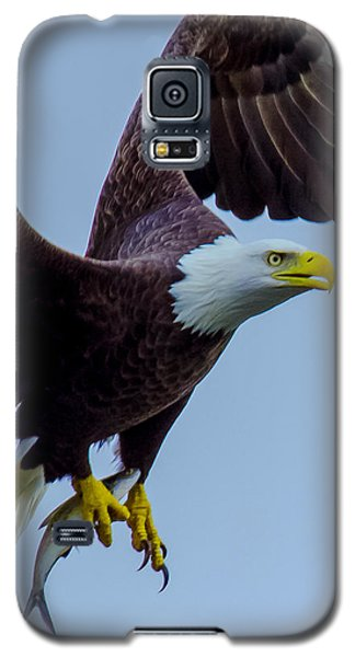 Catch Of The Day Galaxy S5 Case by Jeff at JSJ Photography