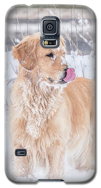Catching Snowflakes Galaxy S5 Case