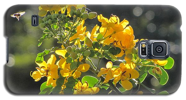 Catchlight Bee Over Yellow Blooms Galaxy S5 Case