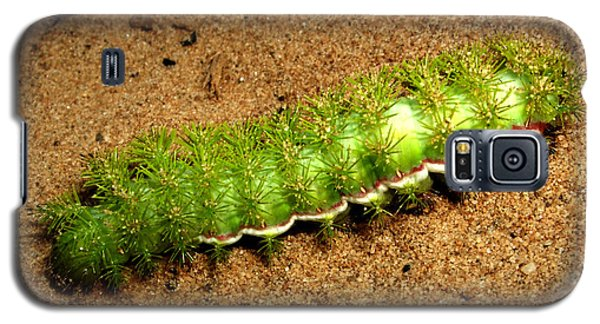 Galaxy S5 Case featuring the photograph Caterpillar 009 - Macro by George Bostian