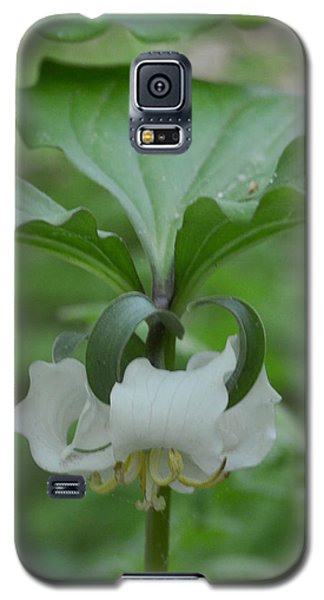 Galaxy S5 Case featuring the photograph Catesby Trillium by Linda Geiger