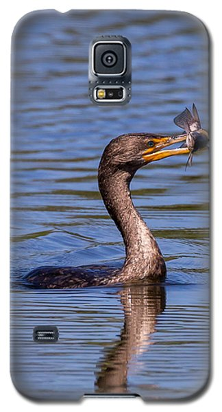 Catfish Dinner Galaxy S5 Case