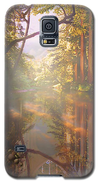 Cathedral Redwoods Galaxy S5 Case by Robby Donaghey