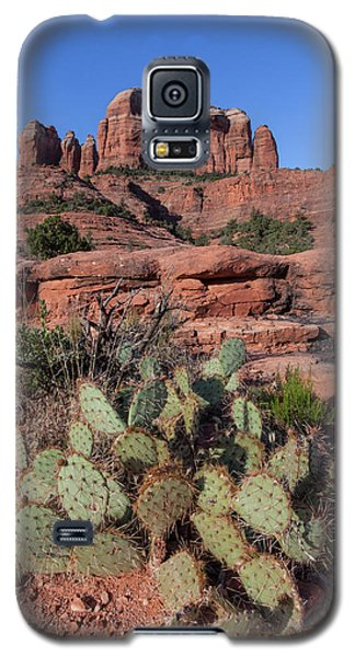 Cathedral Rock Cactus Grove Galaxy S5 Case
