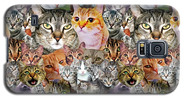 Cats Galaxy S5 Case by Gloria Sanchez