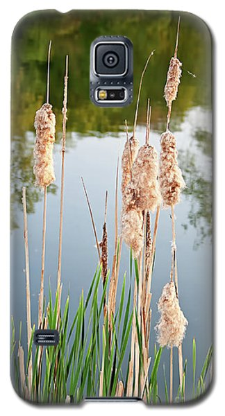Cattail Seeds Wafting In The Air Galaxy S5 Case
