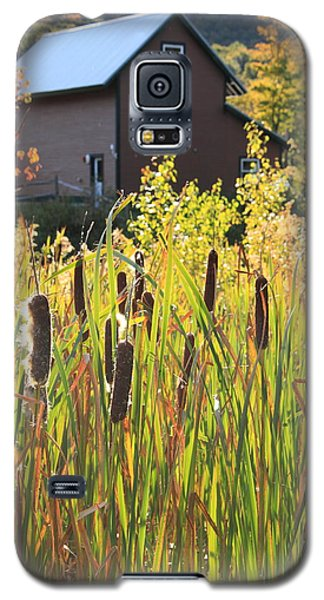 Cattails And Barn Galaxy S5 Case