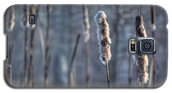 Galaxy S5 Case featuring the photograph Cattails In The Winter by Sumoflam Photography