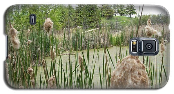 Galaxy S5 Case featuring the photograph Cattails by Mary Mikawoz