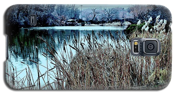 Galaxy S5 Case featuring the photograph Cattails On The Water by Sandy Moulder