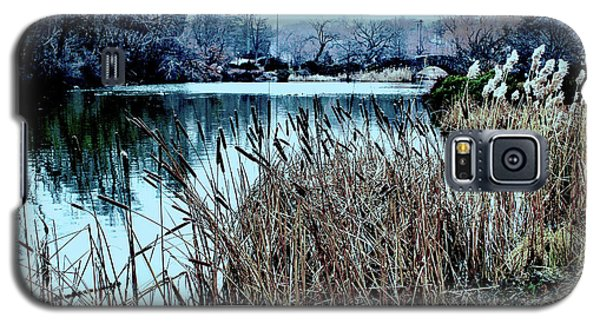 Cattails On The Water Galaxy S5 Case by Sandy Moulder
