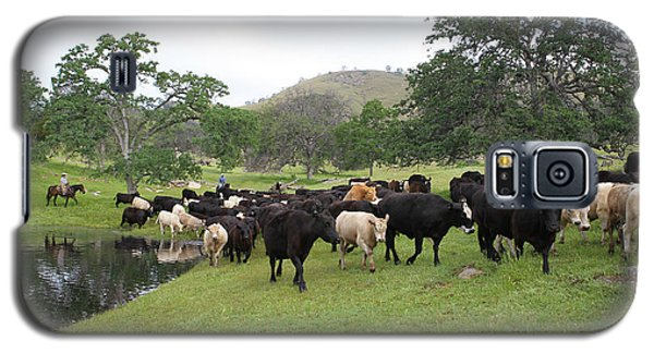 Cattle Galaxy S5 Case