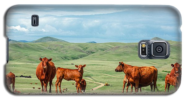 Cattle Guards Galaxy S5 Case