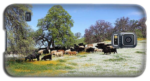 Cattle N Flowers Galaxy S5 Case
