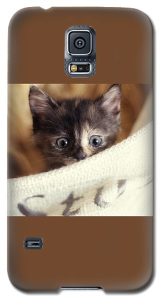 Galaxy S5 Case featuring the photograph In The Hamper by Amy Tyler