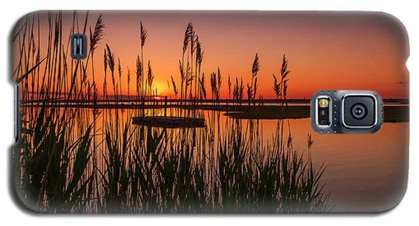 Cedar Beach Sunset In The Reeds Galaxy S5 Case