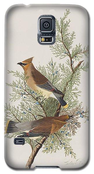 Audubon Galaxy S5 Case - Cedar Bird by John James Audubon