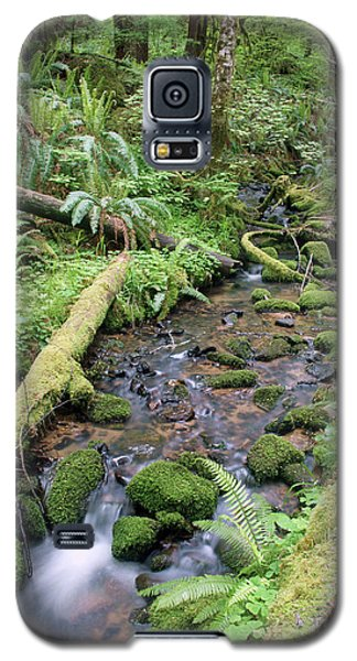Galaxy S5 Case featuring the photograph Cedar Creek Near Cottage Grove Lake #2 by Ben Upham III