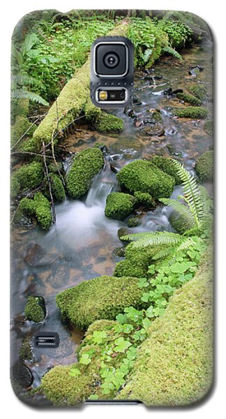 Galaxy S5 Case featuring the photograph Cedar Creek Near Cottage Grove Lake #3 by Ben Upham III
