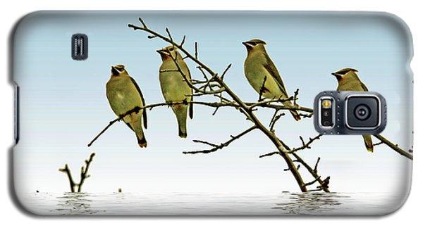 Cedar Waxwings On A Branch Galaxy S5 Case by Geraldine Scull