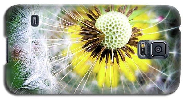 Celebration Of Nature Galaxy S5 Case