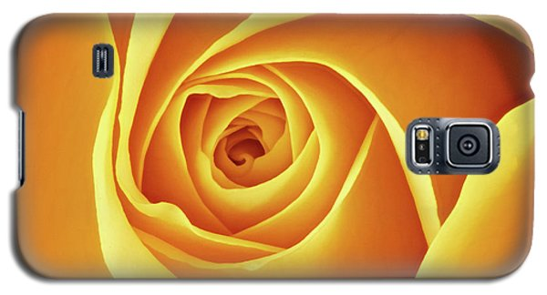Center Of A Yellow Rose Galaxy S5 Case by Jim Hughes