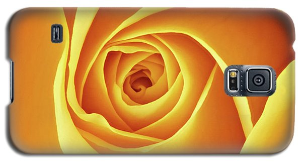 Center Of A Yellow Rose Galaxy S5 Case