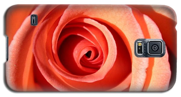 Galaxy S5 Case featuring the photograph Center Of The Peach Rose by Barbara Chichester