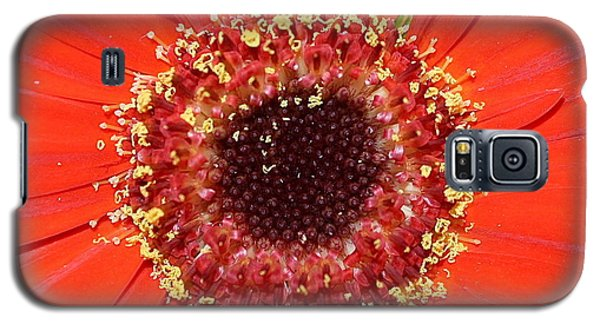 Center Seeds Galaxy S5 Case