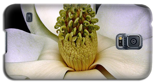 Galaxy S5 Case featuring the photograph Centerpiece - Magnolia Blossom 010 by George Bostian